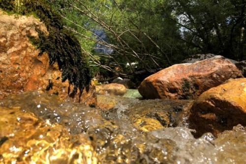 Potok Zadnjica